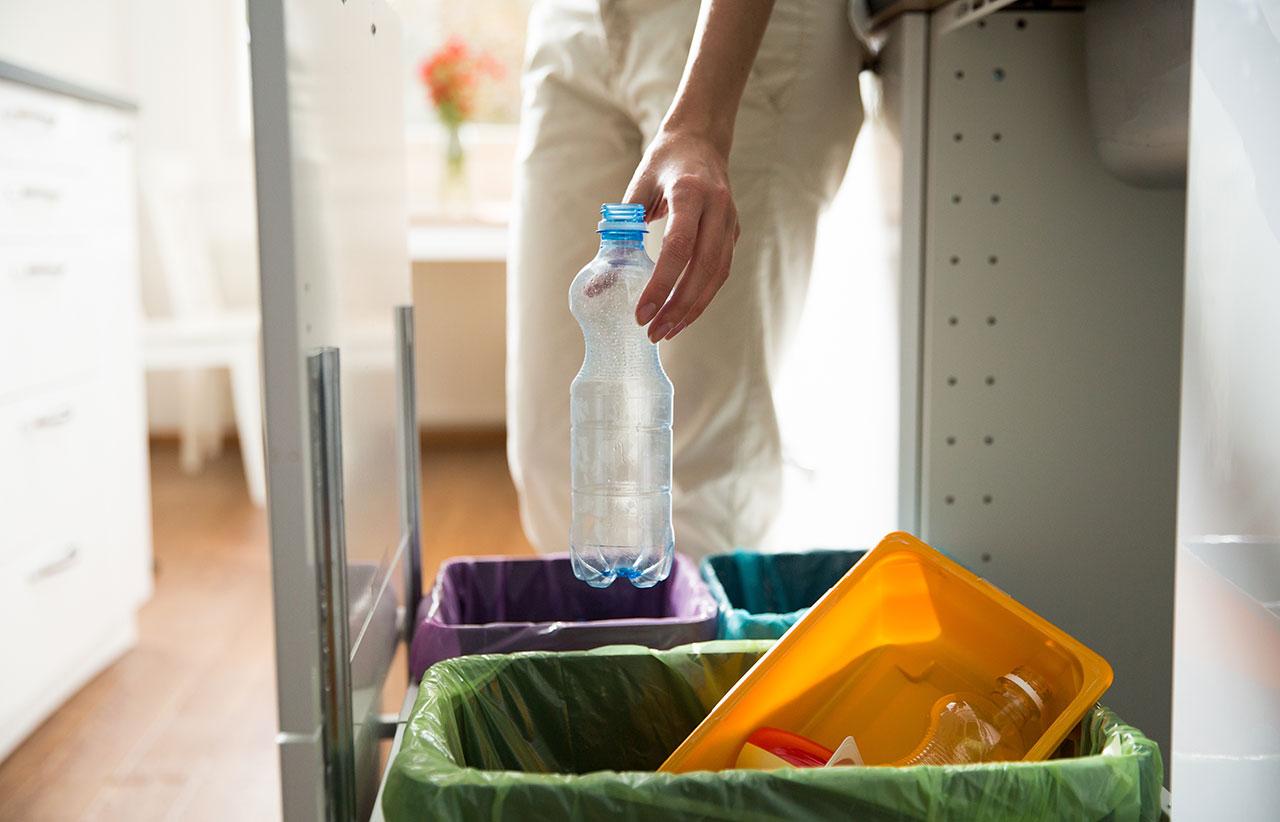Dzień bez śmiecenia – Segregacja śmieci – Velvet