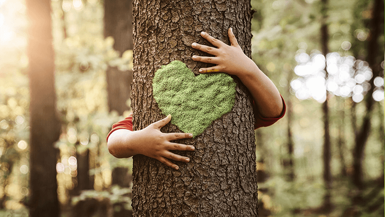 Dziecko obejmujące drzewo – Co to jest ekologia?