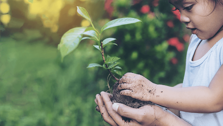 Dziecko trzymające roślinę – Eco Agenda 2025 - Velvet