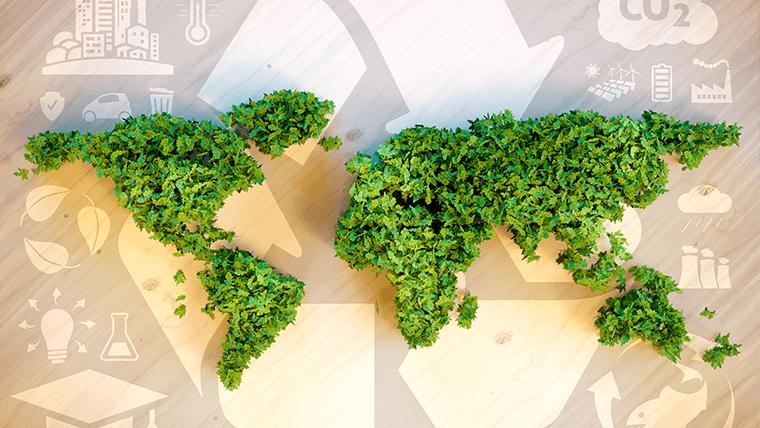 Dbanie o środowisko czyli Eco Agenda Velvet