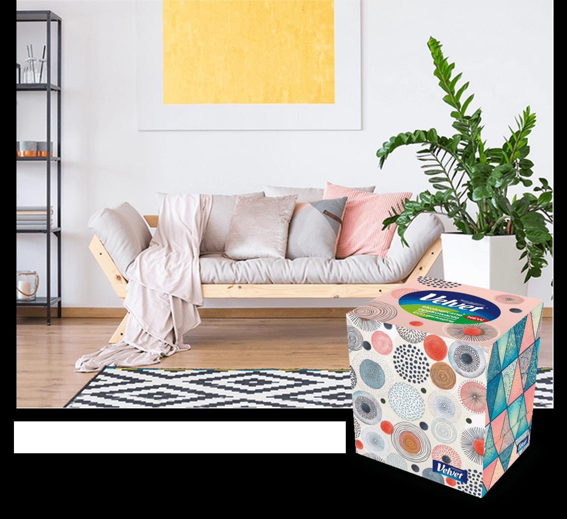 Jany pokój z nowoczesnym wnętrzem z wieloma obrazami i jasną kanapą – prezentacja produktu Velvet: chusteczek higienicznych w pudełku z egzotycznymi wzorami