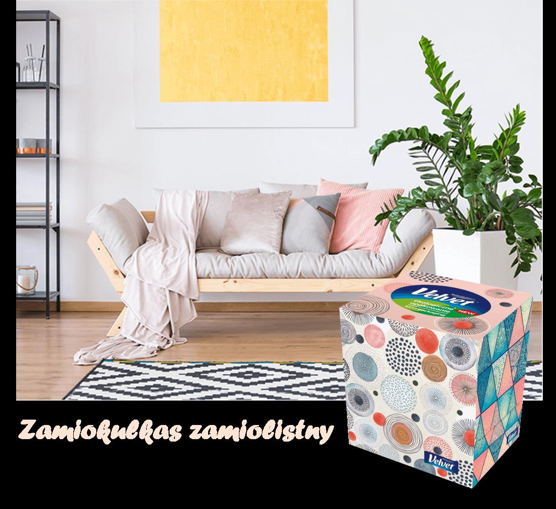 Jasna kanapa z dużą ilością kolorowych poduszek i kocem – prezentacja chusteczek higienicznych Velvet w kolorowym pudełku