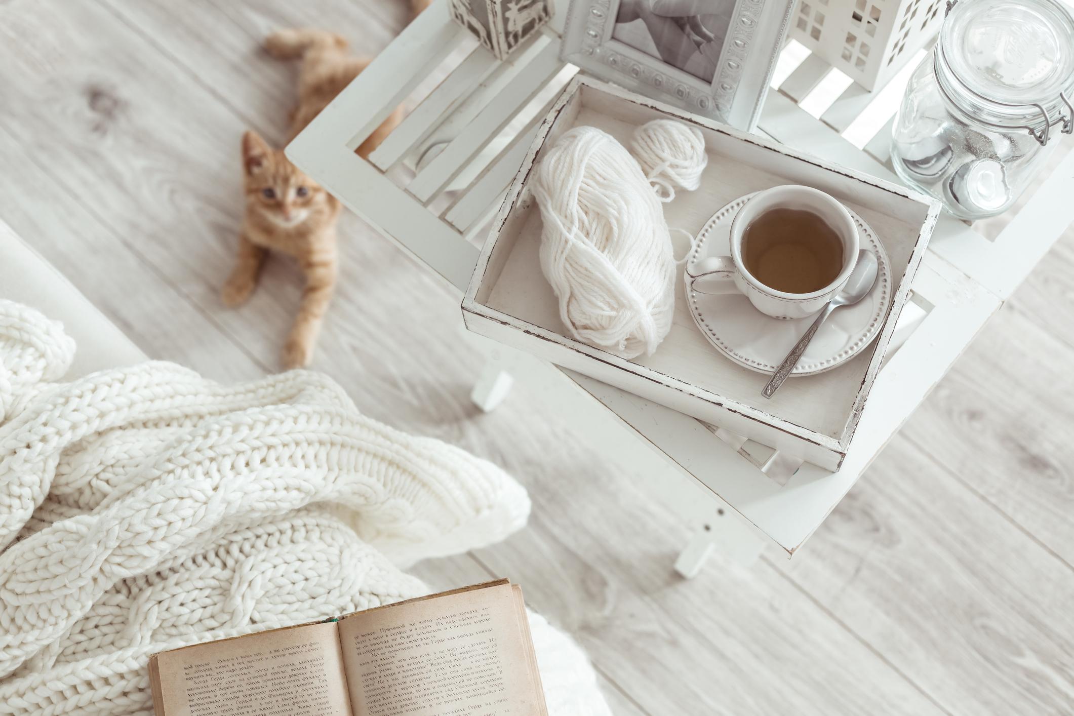 Na stole tacka z kawą i kłębkiem do szycia, pod stołem siedzi rudy kot – pozbądź się śladów sierści po Twoim zwierzaku ręcznikami papierowymi Velvet