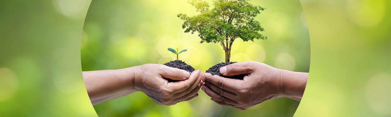 Dbanie o środowisko – jak możesz pomóc?