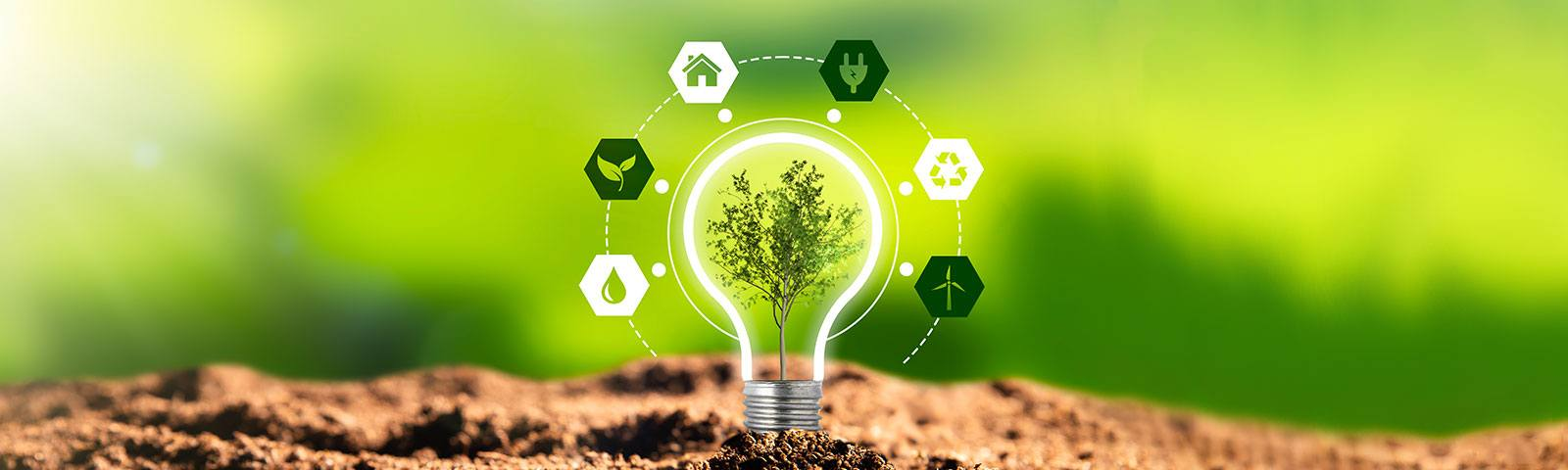 Zrównoważony rozwój – co to jest?